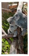 Koala Bath Towel