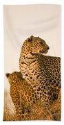 Leopard Panthera Pardus, Arathusa Bath Towel