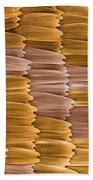 Monarch Butterfly Scales, Sem Bath Towel