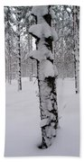 Pine Forest In January Bath Towel