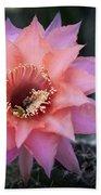 Pink Echinopsis Bath Towel