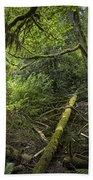 Rain Forest On Vancouver Island Bath Towel