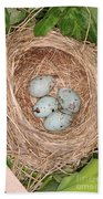 Red-winged Blackbird Nest Bath Towel