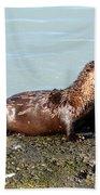 River Otter Bath Towel
