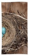 Robins Nest And Cowbird Egg Bath Towel