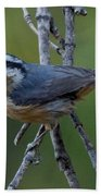 Rose Breasted Nuthatch Hand Towel