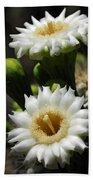 Saguaro Blooms  Bath Towel