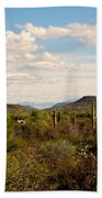 Saguaro National Park Az Bath Towel