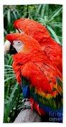 Scalet Macaw Bath Towel