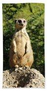 Sentinel Meerkat Bath Towel