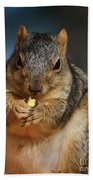 Squirrel Eating Corn Bath Towel