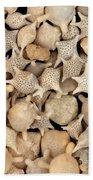 Star Sand Foraminiferans Bath Towel