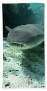 Tawny Nurse Shark Nebrius Ferrugineus Bath Towel