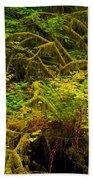 Temperate Rain Forest Bath Towel