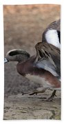 American Wigeon Waterfowl Bath Towel