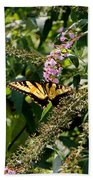 Tiger Swallowtail Butterfly Bath Towel