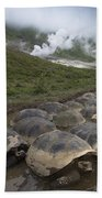 Volcan Alcedo Giant Tortoise Geochelone Bath Towel