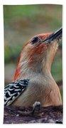Woodpecker II Bath Towel