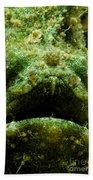 Frogfish Bath Towel