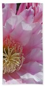Pink Cactus Flowers Bath Towel