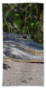 19- Alligator Bath Towel