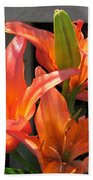 Asiatic Lily Named Gran Paradiso Bath Towel
