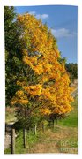 Country Road And Autumn Landscape Bath Towel