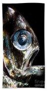 Deep Sea Hatchetfish Bath Towel