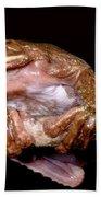 Fringe Limb Tree Frog Bath Towel