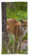 Lynx Bath Towel
