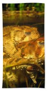 Mating Toads Bath Towel