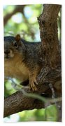 Out On A Branch Bath Towel