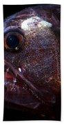 Pacific Viperfish Bath Towel