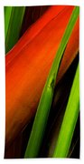 Photograph Of A Parrot Flower Heliconia Bath Towel