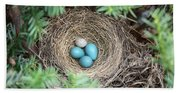 Robins Nest And Cowbird Egg Hand Towel