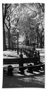 Scenes From Central Park Bath Towel