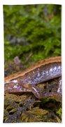 Seepage Salamander Bath Towel