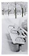 Winter Park Hand Towel by Elena Elisseeva