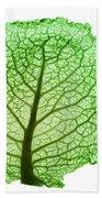 X-ray Of Cabbage Leaf Bath Towel