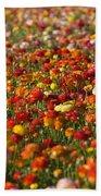 Flower Fields Bath Towel