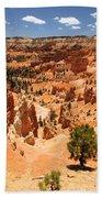 Bryce Canyon Amphitheater Bath Towel