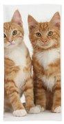 Ginger Kittens Bath Towel