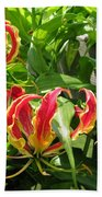 Gloriosa Named Rothschildiana Bath Towel