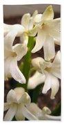 Hyacinth Named Aiolos Bath Towel