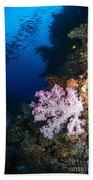 Soft Coral Seascape, Fiji Bath Towel
