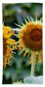 3 Sunflowers Hand Towel
