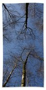 Trees In Epping Forest Bath Towel