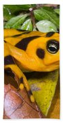 Harlequin Toad Bath Towel