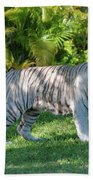 35- White Bengal Tiger Bath Towel