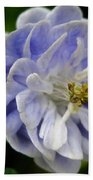 Double Columbine Named Light Blue Bath Towel